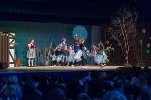 02_Dundenheim_Theatergruppe_Zauberer_von_Oz_030116_14